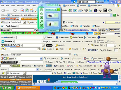 Internet Explorer Bogged Down With Too Many Toolbars